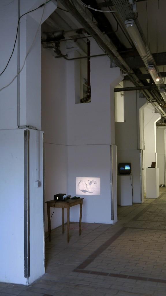 Paulina Sandberg, The Troll Coprolite Archive, 2012 contemporary art nice