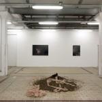 L'Hallali joanna rajkowska rémi voche la station contemporary art nice
