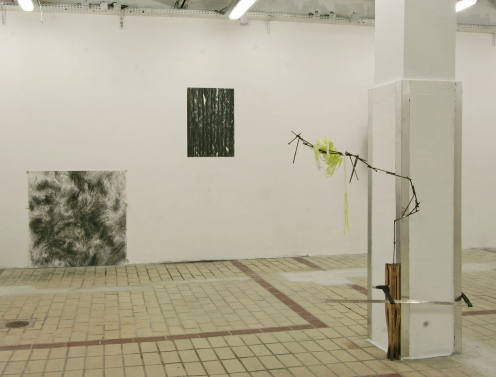 Charlotte Pringuey-Cessac, Raffini Wolska art contemporain nice