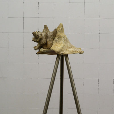 MUD OFFICE - Shell Tripod - La Station -  Art Contemporain - Nice - A Raft of Measures