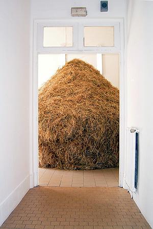Dustin Larson - Haystack, 2004 - La Station -  Art Contemporain - Nice - El Albergue Holandés