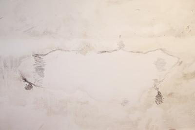Abraham Poincheval - dessin mural - La Station -  Art Contemporain - Nice - La Grande Symbiose II
