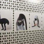 Geoffrey Cottenceau - Animaux, 2001. Photographies sur aluminium  - La Station -  Art Contemporain - Nice - Écotone
