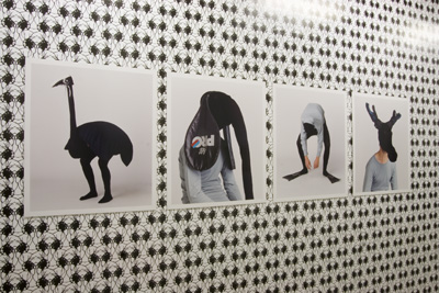Geoffrey Cottenceau - Animaux, 2001. Photographies sur aluminium  - La Station -  Art Contemporain - Nice - Écotone
