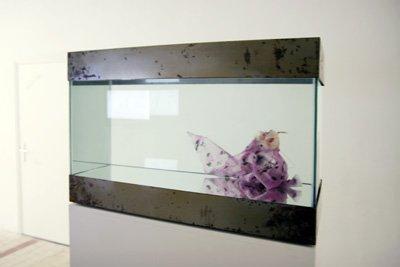 Bruno Pelassy - Sans titre, 2000-2001. Soie, silicone, dentelle, perles, aquarium - La Station -  Art Contemporain - Nice - Écotone