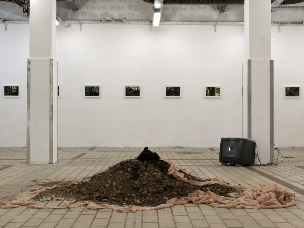 Hallali joanna rajkowska remi voche la station art contemporain nice